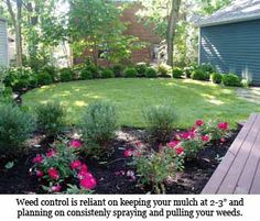High Impact, Low Maintenance Landscaping