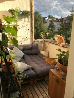 Palettenmöbel auf dem Balkon von You can relax really well on the great balcony of Pallet Furniture, Outdoor Furniture, Outdoor Decor, Balcony Furniture, Couch Magazin, Balkon Design, Diy Projects For Beginners, Living Room Trends, Diy Chicken Coop