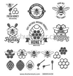 Set of vintage honey labels, badges, logotypes and design elements. Apiary logo template