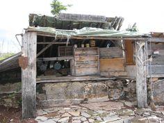 Etthen Cafe, Great Slave Lake, N.W.T.