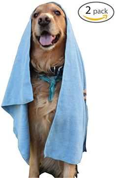 2 Pack Microfiber Pet Bath Towels For Cleaning Dogs  Cats  Large 20x40  Hypoallergenic ChemicalFree Cleaning And Grooming Absorbent Animal Blanket Cloths blue -- Find out more about the great product at the image link. (Note:Amazon affiliate link)