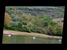 KERKINI LAKE,SERRES,BIRDS