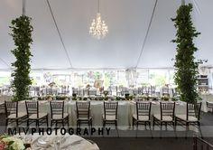 Farm Wedding, Special Day, Charleston, Congratulations, Groom, Table Decorations, Bride, Photography, Wedding Bride