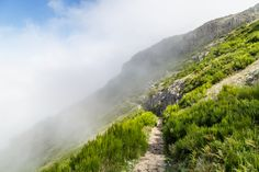Wandern auf Madeira - Reisetipp Funchal, Escape, Wanderlust, Far Away, Places To Go, Portugal, Africa, Hiking, Country Roads