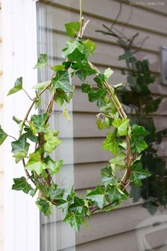 DIY Herbst-Winter-Efeu-Kranz-Deko Decoration ideas with ivy: quick and easy! For windows, arbor and house. DIY, do it yourself, homemade, ivy Diy Spring Wreath, Fall Wreaths, Diy Wreath, Wreath Making, Deco Nature, Nature Decor, Autumn Garden, Easy Garden, Most Beautiful Gardens