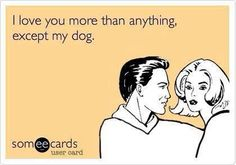 #ecards #pets #dogs WhenToSpay.org