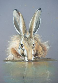 Reflection limited edition Hare print