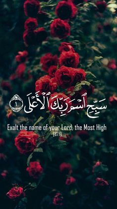 exalt the name of your Lord most high.