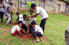 Deforestation due to industrialization is a common phenomenon in Bangladesh's Gazipur District. The students of Shingdhigi primary school in Sreepur Sub District highlighted this issue as part of their school Improvement Plan facilitated by Plan Bangladesh. The students, with the support of the School Management Committee, planted trees in the grounds of the school during using their own funds to buy the saplings.