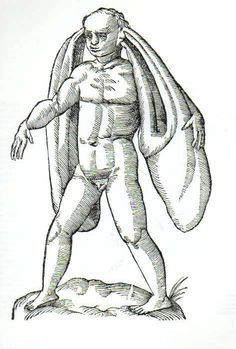 Creatures from Monstrorum historia, by Ulisse Aldrovandi, 1642 Fantasy Creatures, Mythical Creatures, Maleficarum, Humanoid Creatures, Scratchboard, Cryptozoology, Creature Feature, Gravure, Middle Ages