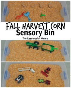 Fall Harvest Corn Sensory Bin We of the best things about fall is harvest and playing in the corn! This corn sensory bin is so easy to make and will provide hours of fun! Fall Sensory Bin, Sensory Tubs, Sensory Activities, Preschool Activities, Sensory Play, Sensory Boxes, Fall Preschool, Preschool Classroom, Preschool Crafts