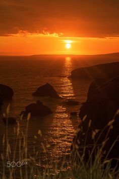 beautiful sunset over the coastal rocks with wild highl grass on the wild atlantic way