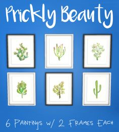 Spirashun's Simblr, Prickly Beauty Watercolors Hi friends- this is a...