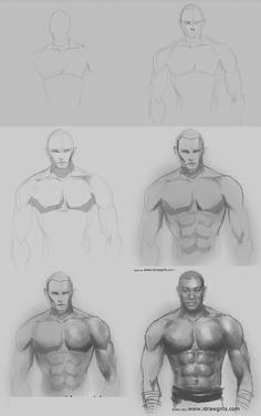 drawing for girls   drawing man muscles step by step How to draw man muscles body anatomy