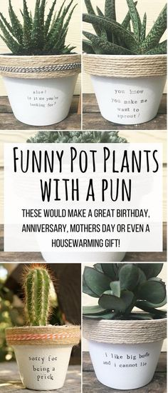 are so unbe-leaf-ably smart and funny! I love love a couple on my kitchen counter for growing herbs. These funny plant pots with puns would make great gifts for birthdays, housewarming, valentines day, anniversary and so on!