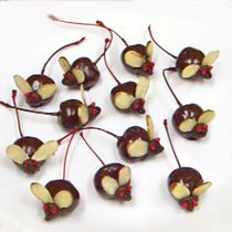 Chocolate-Covered Cherry Mice Recipe: These chocolate-covered cherry mice are fun to create and make an adorable presentation for parties, bake sales, and of course, Halloween. Let the kids help by setting up a production line, and they will have a ball. These candy mice are almost too cute to eat. Check out the step-by-step instructions with photos before you begin.