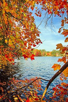 Fall on Lake Opechee -- by Robert Clifford