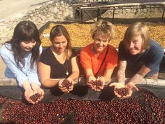 MJ, Lindsey and Heather enjoying some the view of some beautiful coffee cherries at Finca Loma La Gloria.
