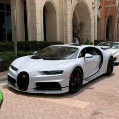 Ferrari F40, Carros Lamborghini, New Ferrari, Lamborghini Gallardo, Luxury Sports Cars, Best Luxury Cars, Sport Cars, Race Cars, Porsche Classic