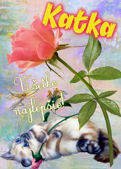 Katka Všetko najlepšie! Birthday Wishes, Happy Birthday, November, Cards, Psalms, Pictures, Board, Wishes For Birthday, Happy Aniversary