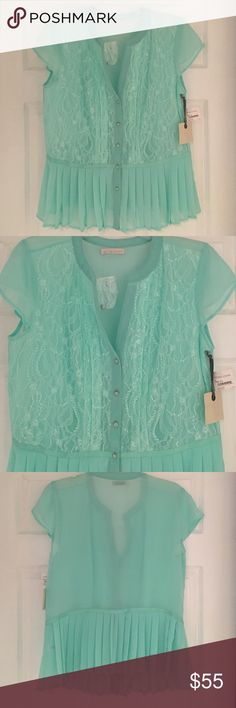 Hinge sheer girly lace blouse Beautiful mint green blouse that is sheer with lace detail on the top. New with tags, never worn. Still has spare button. hinge Tops Blouses