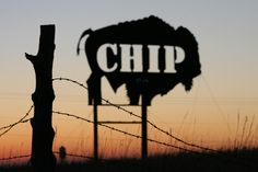Sturgis Buffalo Chip sculpture at dawn.  Photo by Lon Nordbye