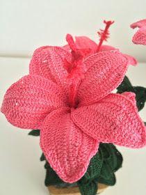 Es una de las plantas tropicales más fascinantes con flores de particular belleza. Elegante y delicada al mismo tiempo con la peculiarida...