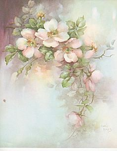 china painting studies berries - Google Search