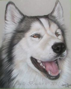 Juneau ~ Pastel on Velour