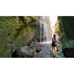 "62 Me gusta, 1 comentarios - •         M         • (@nowlivinglife) en Instagram: ""Fairy tale 🌿🌳🐾 #waterfall #inlove #nature #trekking #lapalma #islabonita #amazing #landscape #green…"""