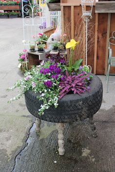 Creative DIY container garden idea using an old tire and table.  The Greenhouse Diaries
