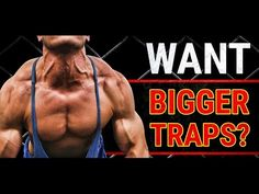 Traps with Scott Herman Fitness.