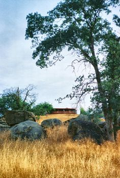 View of Laura's hilltop house from the Hawthorne Ranch.