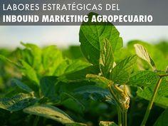 Labores Estratégicas del Inbound Marketing Agropecuario