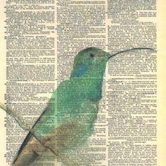 Watercolor illustrations printed on beautifully aged dictionary pages..use on a bible page with favorite verse??