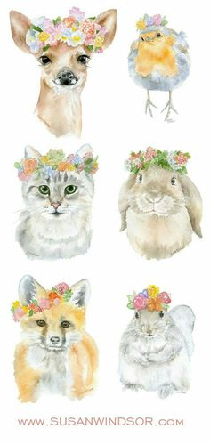 Animals flowers