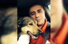 Man Drives 20 Hours to Sochi to Save 11 Homeless Dogs
