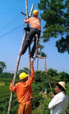 Work at height health and safety humour Funny Fails, Funny Jokes, Hilarious, Funny Images, Funny Photos, Safety Pictures, Random Pictures, Safety Fail, Safety Posters