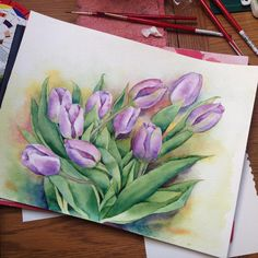 Watercolour by Olga Thorne #watercolour #tulips #botanicalart #watercolor