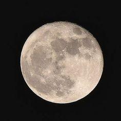 "Instagram【64torikozou】さんの写真をピンしています。 《月 No.1 /2016.11.15 ""Moon No.1"" #月 #スーパームーン #夜 #風景 #夜景 #空 #写真好きな人と繋がりたい #moon #supermoon #night #nightview #landscape #sky #nightsky #photo #photographer #beautiful #awesome #fantastic #followme》"