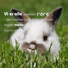 -Sigrid Undset