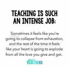 Preschool Teacher Quotes, Teacher Memes, Education Quotes For Teachers, Quotes For Students, Teacher Stuff, Teacher Funnies, Education Major, Teacher Gifts, Biology Humor