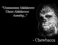 Chewbacca's inspirational quote.