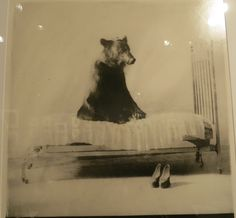 """Photo we saw at the NY AIPAD Show last month, by photographer Gregori Maiofis, entitled """"Politics Makes Strange Bedfellows.""""  I don't think the bear actually wears the shoes by the bed - they look too small.  Maybe he ate the person who wore the shoes?  A mysterious photo, all in all.  This photo bears further study and research. (Sorry about that-I couldn't resist!)"""