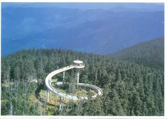 Clingmans dome in the Smokey Mountains. John & I climbed to the top & I thought I would die from lack of air! Beautiful view though.
