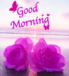 Sweet Good Morning Images, Good Morning Flowers Pictures, Good Morning Friends Images, Good Morning Dear Friend, Good Morning Beautiful Flowers, Good Morning Photos, Morning Pictures, Good Morning Saturday Wishes, Good Morning Love Gif