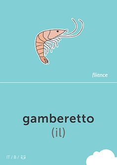Gamberetto #CardFly #flience #animals #italian #education #flashcard #language