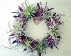 HEART wreath no.1 // small // air plant tillandsia by peacocktaco