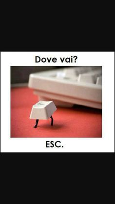 """Asking the Escape key, """"Where are you going? Some Funny Jokes, Funny Pins, Funny Facts, Funny Photos, Funny Images, Hahaha Hahaha, Italian Humor, Savage Quotes, Word Pictures"""