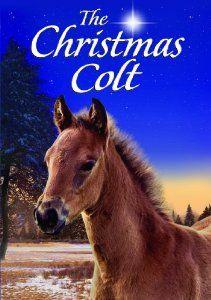 Amazon.com: Christmas Colt: Movies & TV